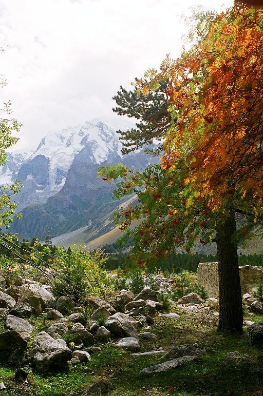 О, мой Кавказ, Родные горы