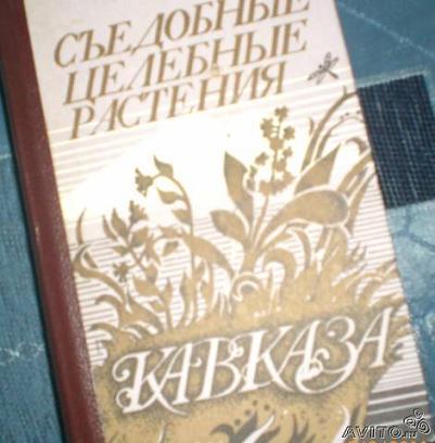 Народные средства Чечни