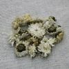 Сушеная хризантема