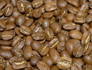 Купить кофе Марагоджип в зернах Никарагуа